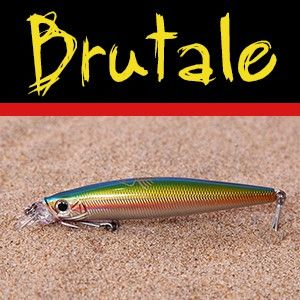 BRUTALE 05 (RAINBOW TROUT)